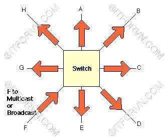 Host F gửi một broadcast đến Switch - [Tự Học CCNA] – Bài 5: Ethernet LAN và hoạt động chuyển mạch