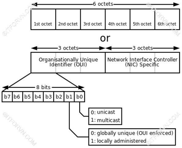 [Tự Học CCNA] – Bài 5: Ethernet LAN và hoạt động chuyển mạch
