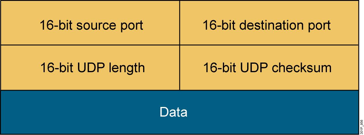Cấu trúc dữ liệu của một UDP Datagram.