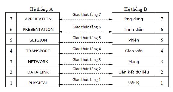Cách hoạt động của mô hình OSI và TCP/IP