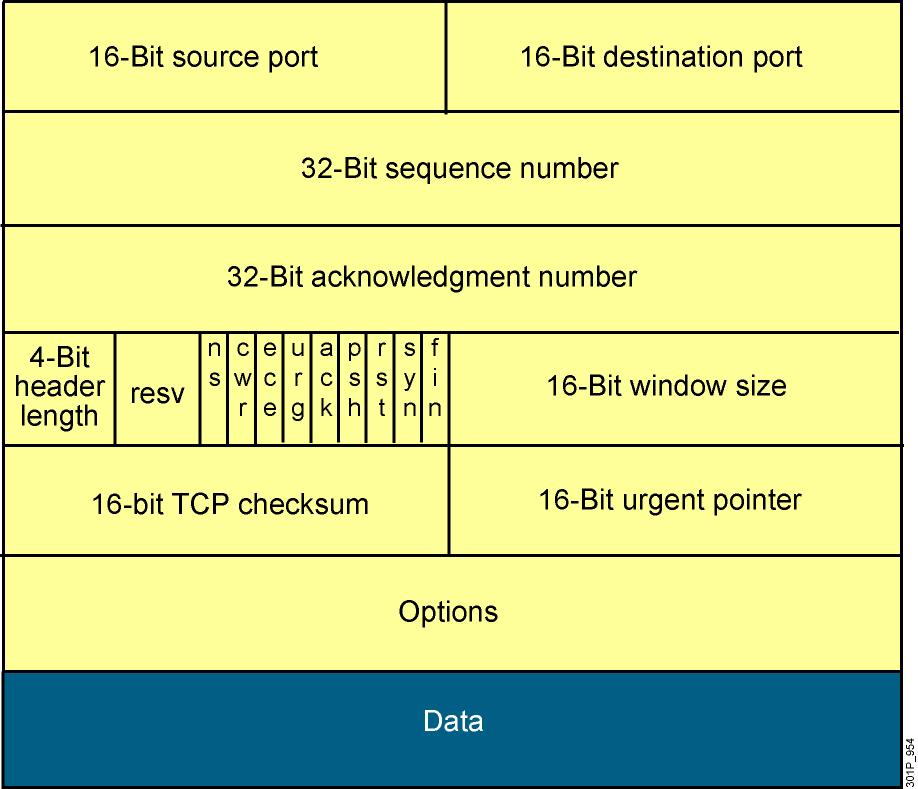 Cấu trúc dữ liệu của một TCP Datagram.