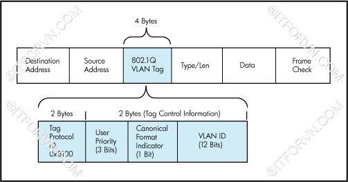 Tự Học CCNA Bài 6: VLAN, Trunking, VTP