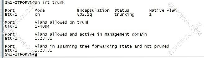 ITFORVN.COM New0128image2 Tự Học CCNA Lab 3: Cấu hình VLAN, Trunking, VTP Tự Học ccna ccna
