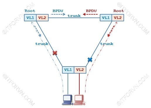 ITFORVN.COM pVST-Concept Tự Học CCNA Bài 8: Giao Thức RSTP, pVST+ Tự Học ccna ccna