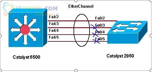 STP cắt loop trên các đường link redundant