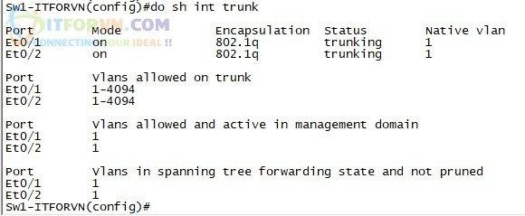ITFORVN.COM H2.-Show-interface-trunk-trên-SW1 Tự Học CCNA-Lab 5 Cấu hình STP