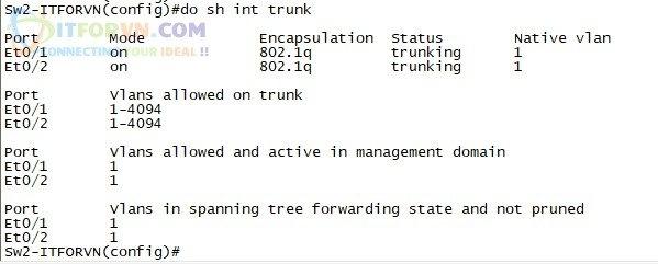 ITFORVN.COM H3.-Show-interface-trunk-trên-SW2 Tự Học CCNA-Lab 5 Cấu hình STP